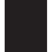 logo Sophie Guyot